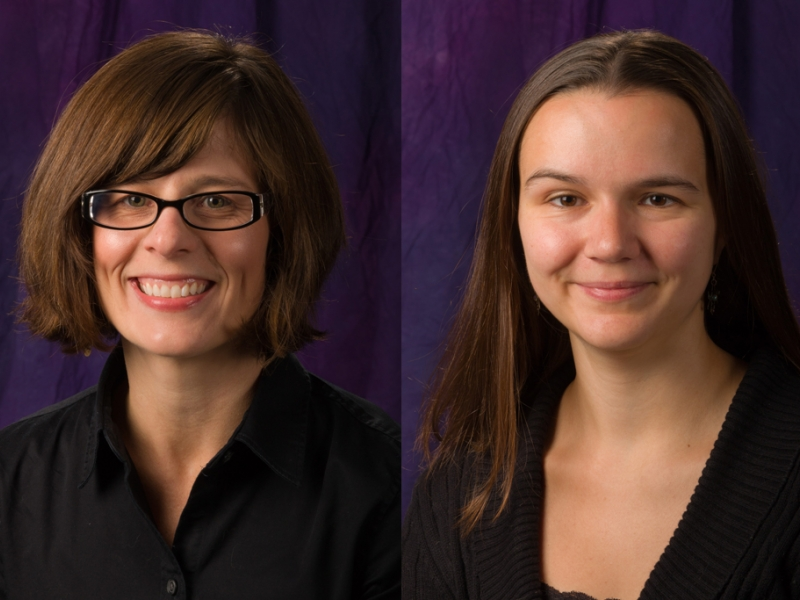 Niagara University Announces 2016 Teaching Award Winners